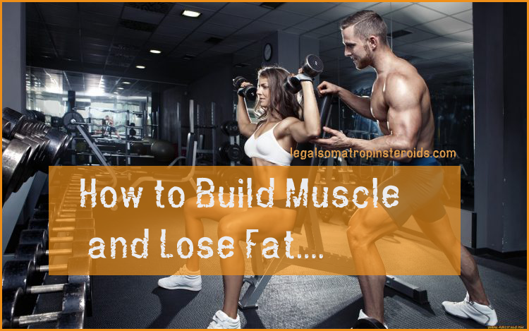 Build Muscle and lose fat fast